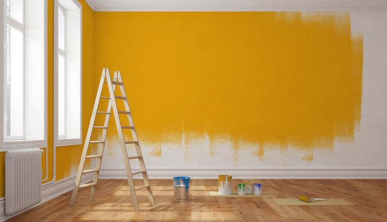 house painting design & colours